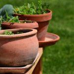 Donice ogrodowe, jakie warto wybierać?